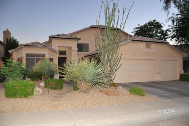 29450 N 46TH Place, Cave Creek, AZ 85331 (MLS #5782971) :: Lux Home Group at  Keller Williams Realty Phoenix