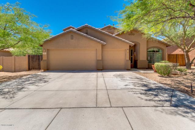 8363 W Molly Lane, Peoria, AZ 85383 (MLS #5782986) :: My Home Group