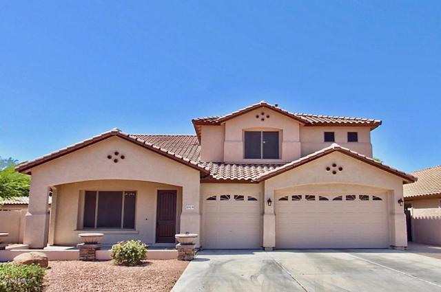 5919 W Poinsettia Drive, Glendale, AZ 85304 (MLS #5783056) :: My Home Group