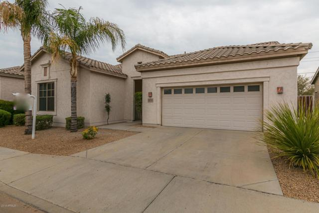 18218 N 48TH Place, Scottsdale, AZ 85254 (MLS #5783062) :: Occasio Realty