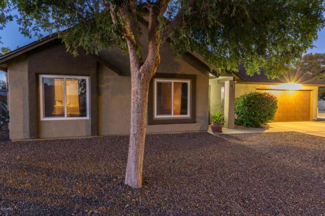 13263 N 55TH Drive, Glendale, AZ 85304 (MLS #5783070) :: My Home Group