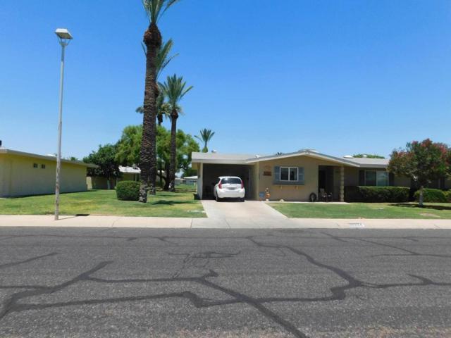 10324 W Audrey Drive, Sun City, AZ 85351 (MLS #5783073) :: The Daniel Montez Real Estate Group