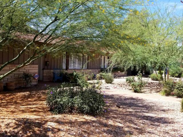 405 E Bishop Drive, Tempe, AZ 85282 (MLS #5783108) :: The Daniel Montez Real Estate Group