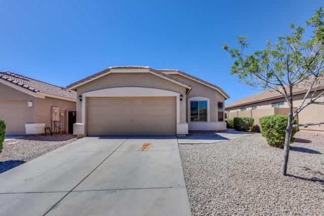 3663 W Yellow Peak Drive, Queen Creek, AZ 85142 (MLS #5783116) :: The Daniel Montez Real Estate Group