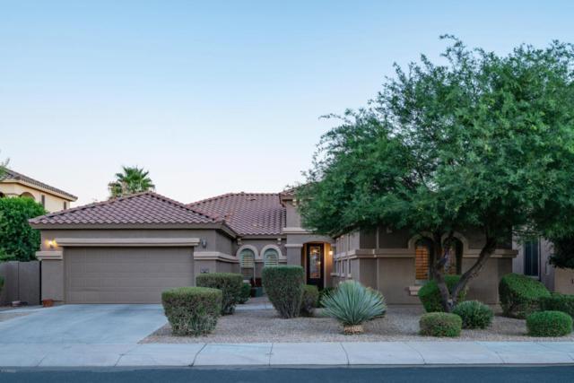 15303 W Turney Avenue, Goodyear, AZ 85395 (MLS #5783117) :: The Daniel Montez Real Estate Group
