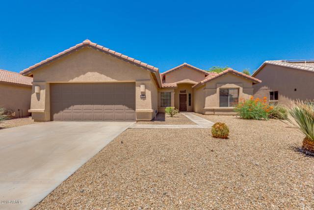 3090 N 147TH Drive, Goodyear, AZ 85395 (MLS #5783149) :: The Daniel Montez Real Estate Group