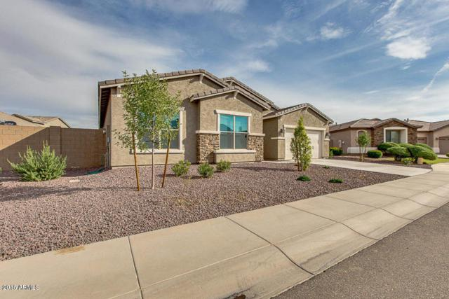 10508 W Odeum Lane, Tolleson, AZ 85353 (MLS #5783152) :: My Home Group