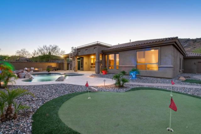 8369 W Bent Tree Drive, Peoria, AZ 85383 (MLS #5783156) :: The Laughton Team