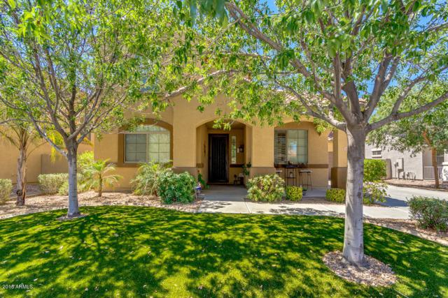 21413 E Lords Way, Queen Creek, AZ 85142 (MLS #5783173) :: The Daniel Montez Real Estate Group