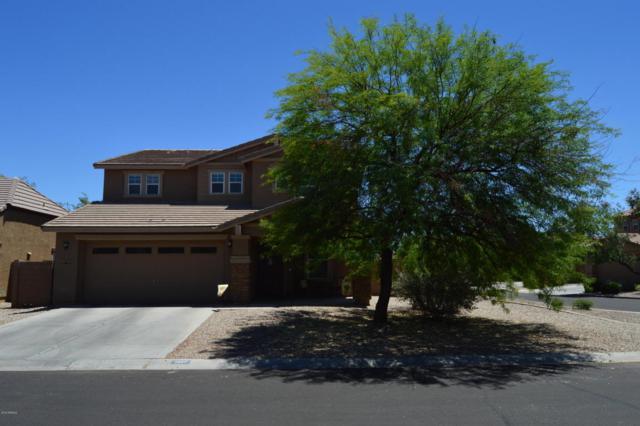 1347 E Desert Holly Drive, San Tan Valley, AZ 85143 (MLS #5783191) :: The Pete Dijkstra Team