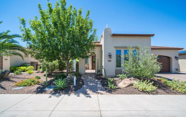 587 E Laddoos Avenue, San Tan Valley, AZ 85140 (MLS #5783206) :: Santizo Realty Group
