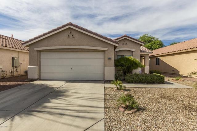 10518 W Windsor Boulevard, Glendale, AZ 85307 (MLS #5783214) :: My Home Group
