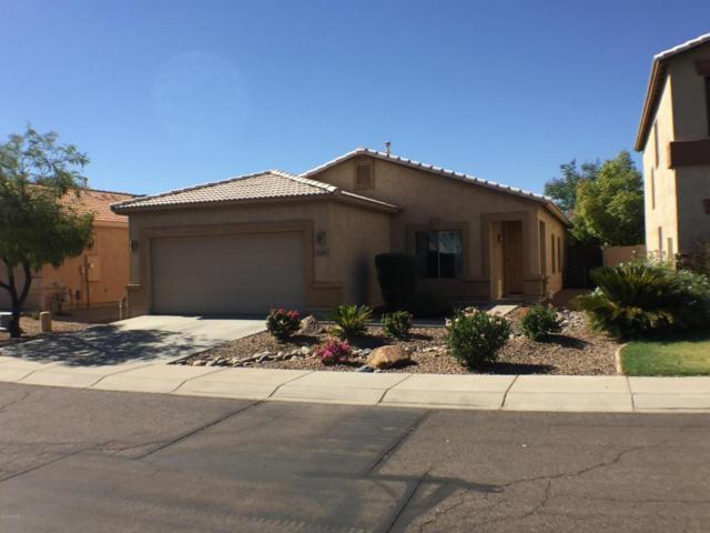 338 E Shawnee Road, San Tan Valley, AZ 85143 (MLS #5783244) :: The Pete Dijkstra Team