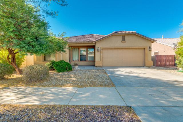 14228 W Desert Hills Drive, Surprise, AZ 85379 (MLS #5783245) :: My Home Group