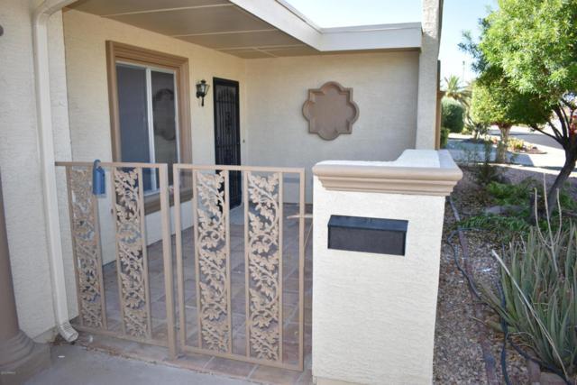 16402 N Orchard Hills Drive, Sun City, AZ 85351 (MLS #5783247) :: The Daniel Montez Real Estate Group