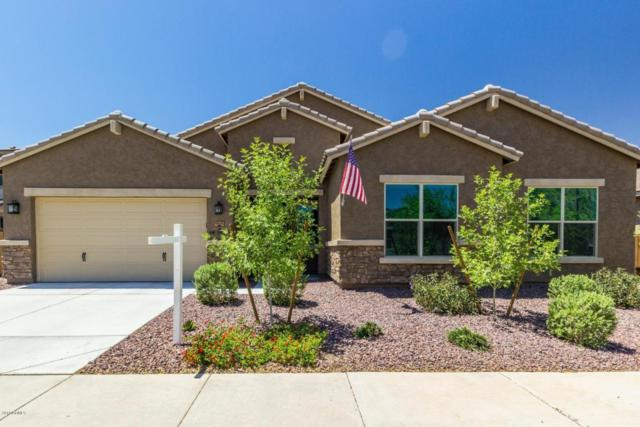 10605 W Odeum Lane, Tolleson, AZ 85353 (MLS #5783268) :: Revelation Real Estate