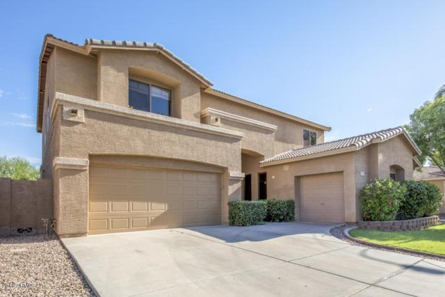 747 W Ebony Way, Chandler, AZ 85248 (MLS #5783270) :: Revelation Real Estate