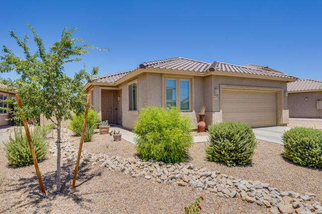 11732 W Maui Lane, El Mirage, AZ 85335 (MLS #5783272) :: Revelation Real Estate