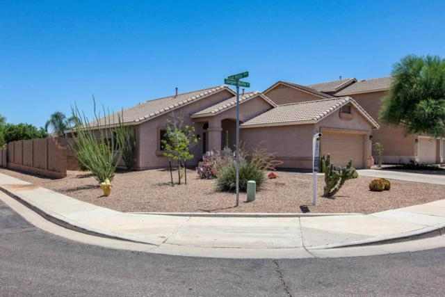 2372 W Jasper Butte Drive, Queen Creek, AZ 85142 (MLS #5783275) :: The Daniel Montez Real Estate Group