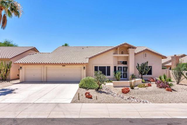 9019 W Kerry Lane, Peoria, AZ 85382 (MLS #5783331) :: Desert Home Premier