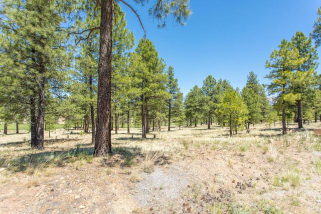 1620 E Castle Hills Drive, Flagstaff, AZ 86005 (MLS #5783340) :: Kepple Real Estate Group