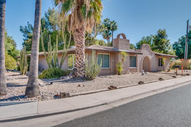 1805 E Indigo Street, Mesa, AZ 85203 (MLS #5783341) :: Kortright Group - West USA Realty