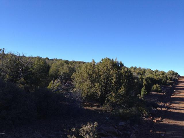 Lot 135 N Velvet Antler Road, Kingman, AZ 86401 (MLS #5783357) :: The Daniel Montez Real Estate Group