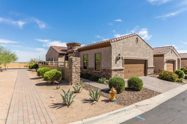 1847 N Red Cliff, Mesa, AZ 85207 (MLS #5783366) :: The Daniel Montez Real Estate Group