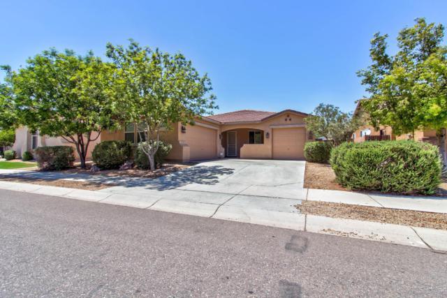 17262 W Morning Glory Street, Goodyear, AZ 85338 (MLS #5783373) :: Devor Real Estate Associates