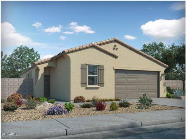 477 W Tenia Trail, San Tan Valley, AZ 85140 (MLS #5783432) :: Yost Realty Group at RE/MAX Casa Grande