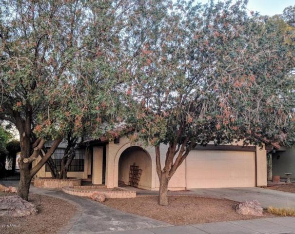 2053 S Paseo Loma, Mesa, AZ 85202 (MLS #5783476) :: My Home Group