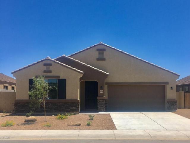 23779 W Cocopah Street, Buckeye, AZ 85326 (MLS #5783597) :: Devor Real Estate Associates
