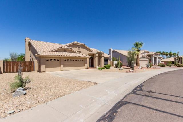 10722 S Coolwater Drive, Goodyear, AZ 85338 (MLS #5783615) :: Devor Real Estate Associates