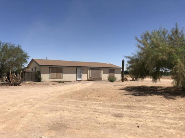 49580 W Mockingbird Lane, Maricopa, AZ 85139 (MLS #5783630) :: Yost Realty Group at RE/MAX Casa Grande