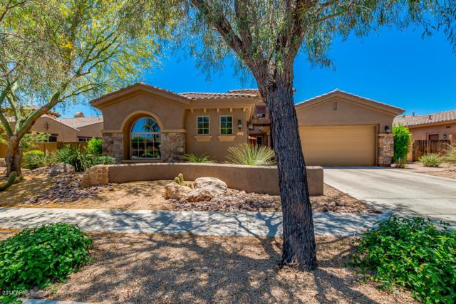 1805 W Dusty Wren Drive, Phoenix, AZ 85085 (MLS #5783645) :: Yost Realty Group at RE/MAX Casa Grande