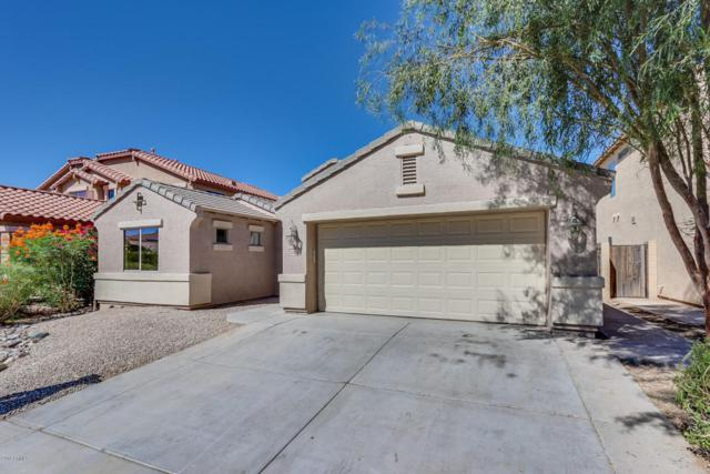 22355 N Dietz Drive, Maricopa, AZ 85138 (MLS #5783657) :: My Home Group