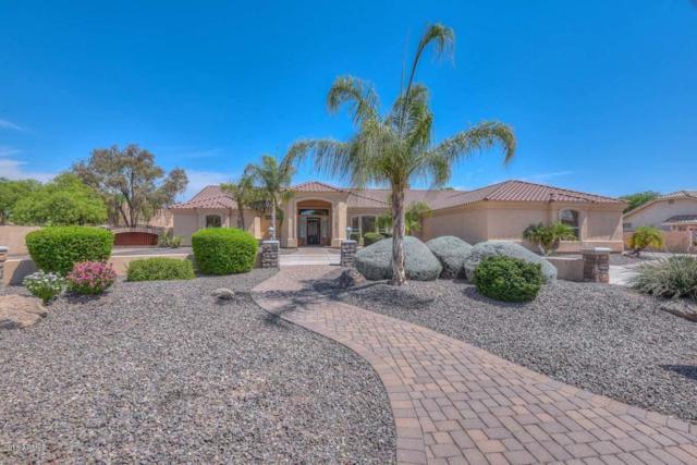 9602 W Camino De Oro, Peoria, AZ 85383 (MLS #5783662) :: Devor Real Estate Associates