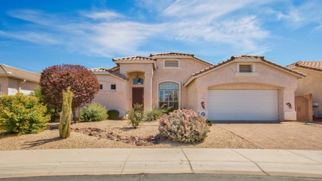 18195 W Stinson Drive W, Surprise, AZ 85374 (MLS #5783676) :: Devor Real Estate Associates