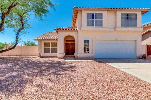 11024 S Desert Lake Drive, Goodyear, AZ 85338 (MLS #5783685) :: The Garcia Group @ My Home Group