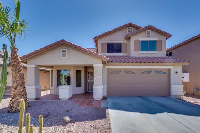 21392 N Van Loo Drive, Maricopa, AZ 85138 (MLS #5783691) :: My Home Group