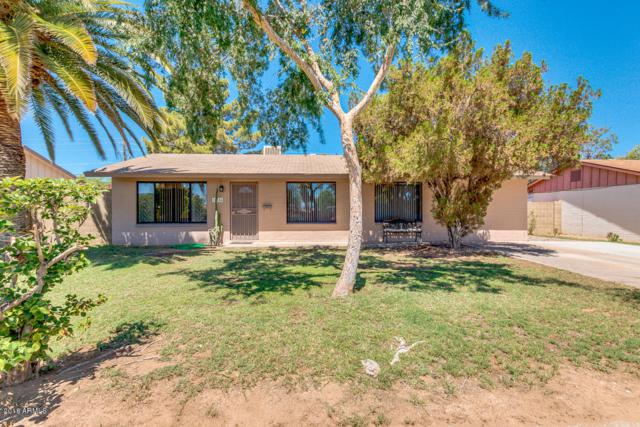 14854 N 24TH Place, Phoenix, AZ 85032 (MLS #5783722) :: Brett Tanner Home Selling Team