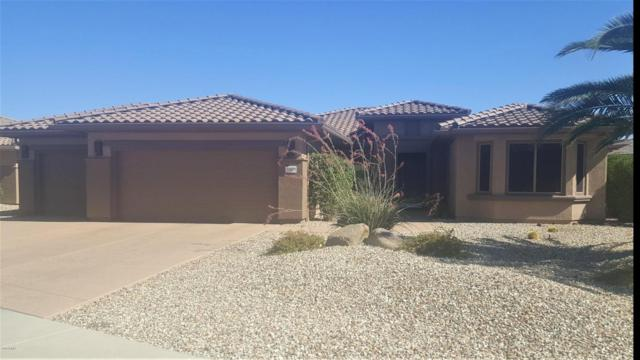 20803 N Grand Staircase Drive, Surprise, AZ 85387 (MLS #5783740) :: Devor Real Estate Associates