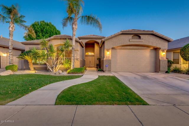 6563 W Piute Avenue, Glendale, AZ 85308 (MLS #5783745) :: Devor Real Estate Associates