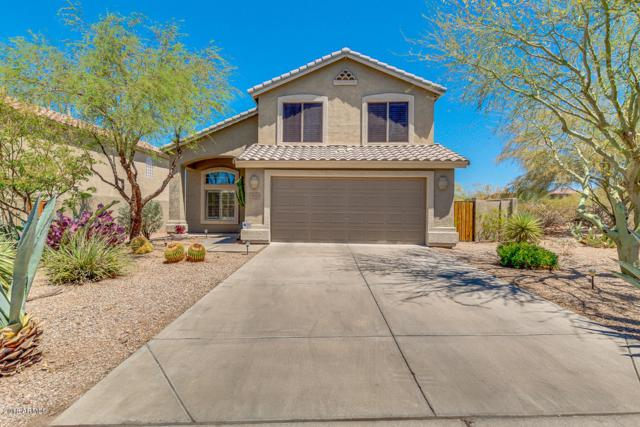 4522 E Cox Court, Cave Creek, AZ 85331 (MLS #5783747) :: Lifestyle Partners Team