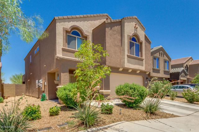 6114 E Oasis Boulevard, Florence, AZ 85132 (MLS #5783763) :: Devor Real Estate Associates