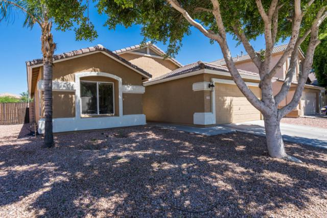 3121 N 129th Avenue, Avondale, AZ 85392 (MLS #5783764) :: Group 46:10