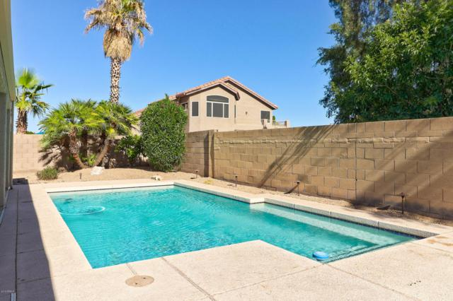 6647 W Tonopah Drive, Glendale, AZ 85308 (MLS #5783769) :: Devor Real Estate Associates