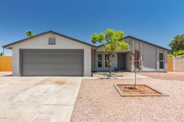 2005 N Los Arboles Court, Chandler, AZ 85224 (MLS #5783779) :: Devor Real Estate Associates