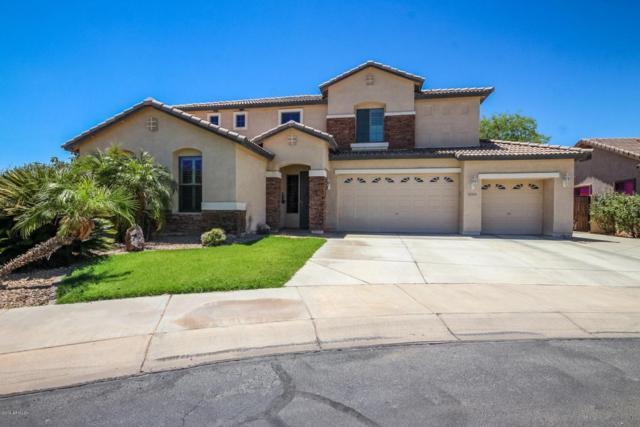 14231 W Windward Avenue, Goodyear, AZ 85395 (MLS #5783785) :: Kortright Group - West USA Realty