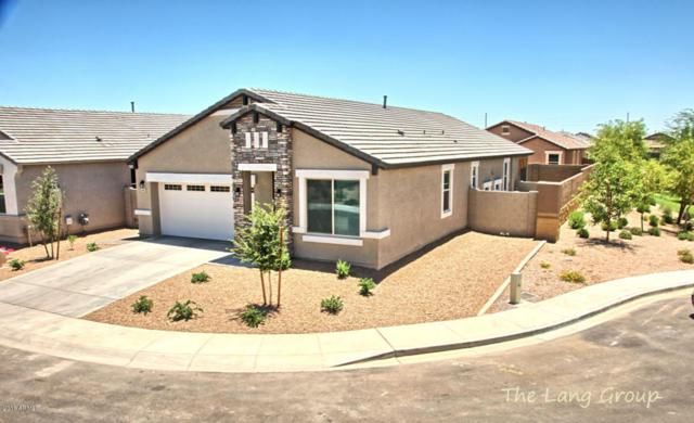 41403 W Williams Way, Maricopa, AZ 85138 (MLS #5783799) :: Group 46:10